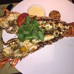 WOW! Huge lobster. Not to mention delicious