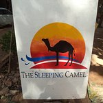 Foto The Sleeping Camel