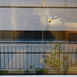 Ibis Budget Madrid Valentin Beato Foto
