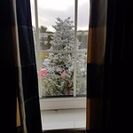 The flashing Christmas tree directly outside the bedroom window!