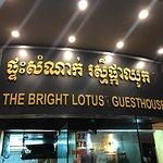 The Bright Lotus