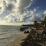 Carlito's Sunrise Paradise Picture