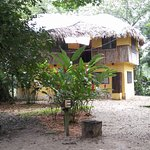 Photo of Kin Balam Cabanas Palenque