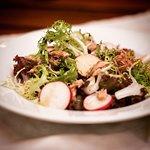 Salad Mix with Tuna Fish