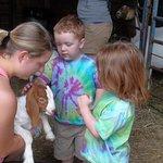 Farm experience, pet goats, bunnies, calves, horses...