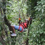 JungleQui Zipline park @ the National Rainforest