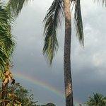 Coconut Palms Inn Foto