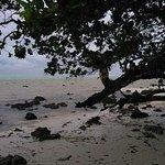 beach attached to El Doarado beach resort