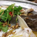 Steamed Patin fish with soy sauce