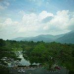 Photo de 1582485