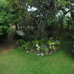 A beautiful garden to relax, eat and dry cloths