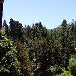Foto de Hotel & Resort La Cumbrecita