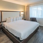 A luxurious room with a comfortable king bed and wood floors. Complimentary wifi and snacks.