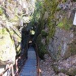 Scenic Caves Nature Adventures Foto
