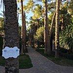 Photo of El Oasis Villas