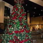 Christmas Tree in the lobby.