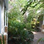 Chobe River Cottages Foto