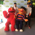 Sesame street with the Maple leaf