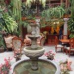 shared courtyard, garden, fountain