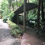 Foto de Pethers Rainforest Retreat