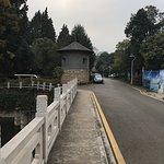 Photo de Yunnan Zhenzhuang Guest House