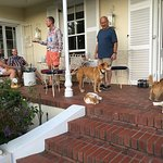 Sundowner drinks on the stoop with hosts, guests and of course the wonderful animals.