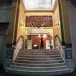 Фотография Hotel Woodland