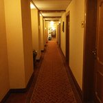 Zdjęcie Hotel Stefanie