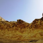 Hidden fossils, interesting stones...