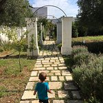 Photo of Masseria Bianca di Puglia