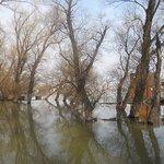 Foto de Arkabarka Floating Hostel