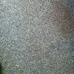 Stained carpet 4