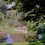 Warsaw Municipal Zoological Garden Foto