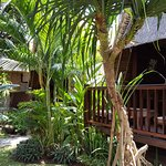 Photo of Alam Nusa Huts and Spa