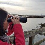 Elkhorn Slough National Estuarine Research Reserve Foto