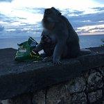 Красивое место, много обезьян и невероятный обрыв. Советую приезжать сюда на закате.
