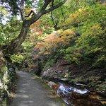長蛇渓付近の遊歩道