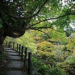白銀の滝脇の遊歩道