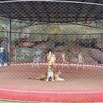 Ningbo Zoo