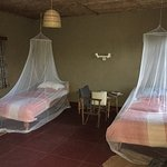 Mosquito nets provided