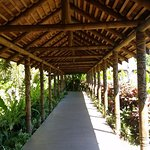 covered walk ways to the room with carved posts and natural thatching.