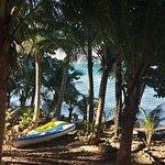 Photo of Paradise Palms Resort