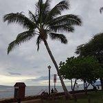 Photo of Maui Swiss Cafe
