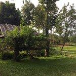 Photo of Yang Tone Farm Stay