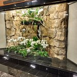 White Oaks Conference Resort & Spa Foto