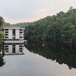 Foto de Amazon Jungle Palace