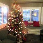 Christmas Tree 2016, Lobby, Best Western Garden Inn, Santa Rosa, CA