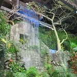 Entrance of The Rainforest