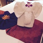 Towel made into an elephant