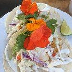 Black Rockfish Tacos from CS Fishery Manzanita Oregon  Farmers Market